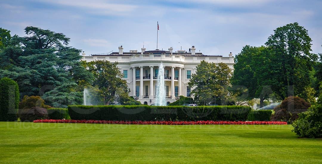 Cập nhận tình hình ứng phó với dịch COVID - 19 tại Mỹ