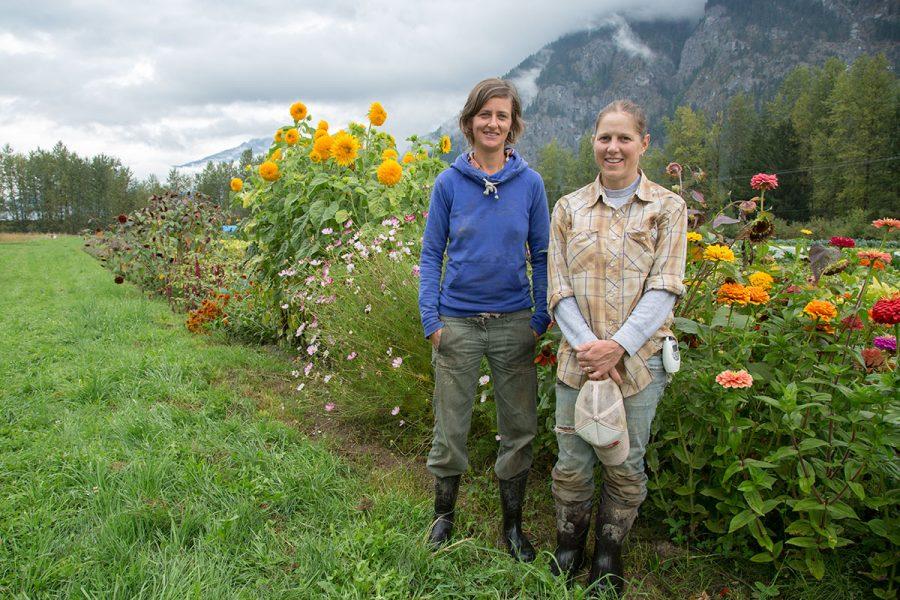 nông nghiệp british columbia lnc global