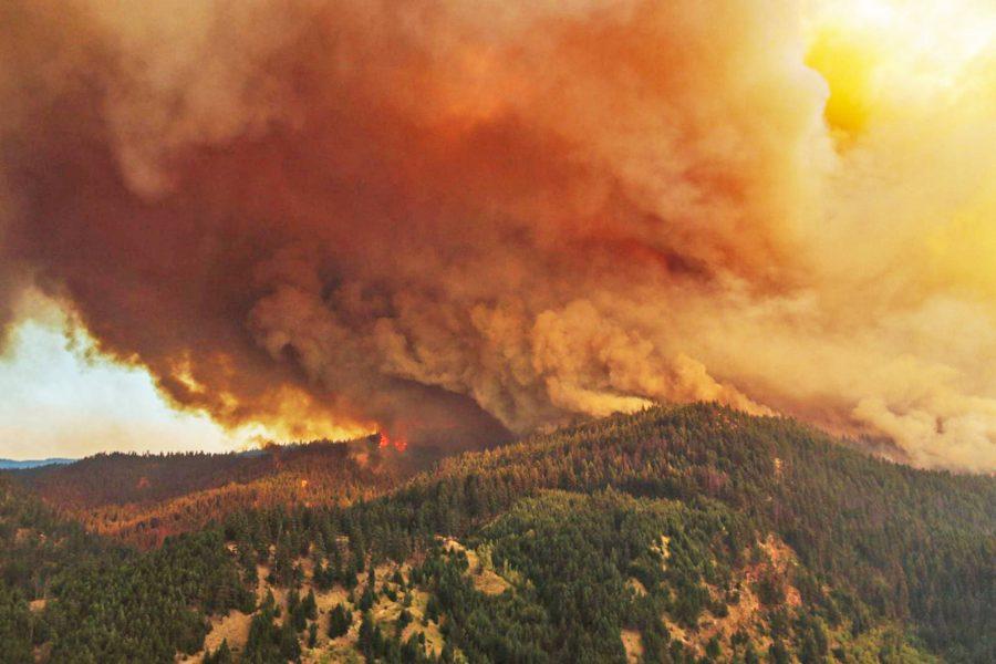cháy rừng ở BC khu vực Hồ Đá Trắng vào đêm Chủ nhật.
