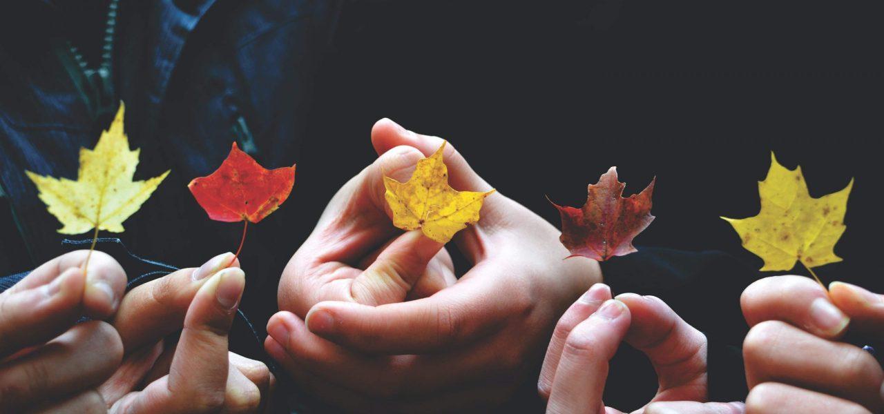 Canada ưu tiên cho những cá nhân đang sống và làm việc tại Canada xin lên thường trú nhân thông qua chương trình định cư canada diện CEC