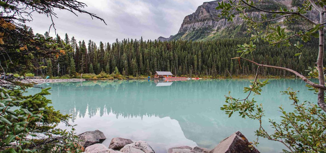 Nhiều vị trí công việc trống tại Alberta Canada